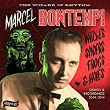 Witches, Spiders, Frogs and Holes By Marcel Bontempi (2015-04-27)