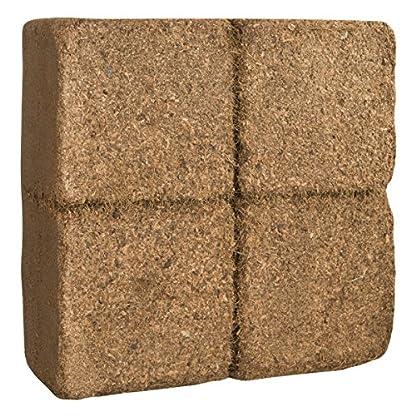 Humusziegel 1 block- 70 Coconut Litter for Reptiles, Terrarium Substrate, Terrarium Bedding, Ground Coconut, Tortoise… 3
