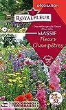 Royalfleur PFRF08357 Graines de Mélange de Fleurs mon Massif Fleur Champêtre 25 m²
