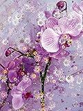 CALVENDO Puzzle Verspielte Romantische Rosa Orchidee 1000 Teile Lege-Größe 48 x 64 cm Foto-Puzzle Bild von Alaya Gadeh