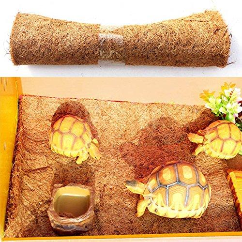Terrarium Bedding - Reptile Pet Bed Mat Aquarium Tortoise Turtle Lizard Reptiles Climbing Coconut Palm Carpet Tb - Carpet Liner Substrate Terrarium Supply Gecko Outfit Resin Plant Fish Aquarium K