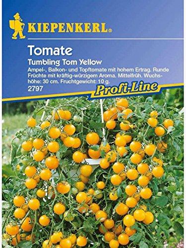 kiepenkerl-tomaten-tom-yellow
