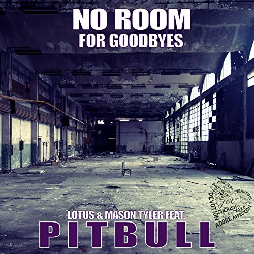 No Room for Goodbye (feat. Pit...