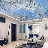 Tapete Experten 3dthe 3-dimensional Sky-Tapete an der Wand im Wohnzimmer, mit Schnee Tapete Schlafzimmer videosthe 4dthe Seamless-Gemälde,