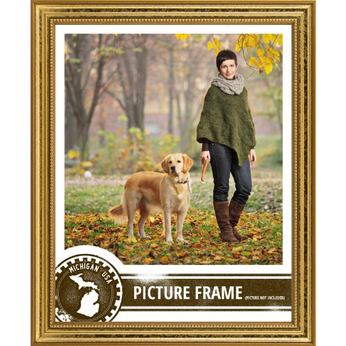craig-frames-314gd2436dac-075-cm-breit-bilderrahmen-mit-verzierungen-24-x-36-cm-goldfarben
