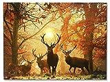 YISUMEI Decke 125x150 cm Kuscheldecken Sanft Flanell Weich Fleecedecke Bettüberwurf Hirsch im Herbst Wald