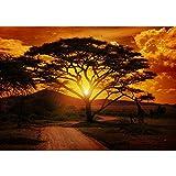 Vlies Fototapete PREMIUM PLUS Wand Foto Tapete Wand Bild Vliestapete - AFRICAN SUNSET - Sonnenaufgang Arfika Steppe Giraffe Orange Safari - no. 058, Größe:300x210cm Vlies