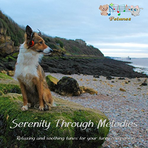 serenity-through-melodies-for-dogs-cd