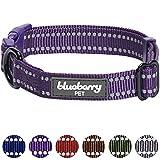 Blueberry Pet 3M Reflektierendes Verstellbares Klassisches Unifarbenes Hundehalsband in Violett, S