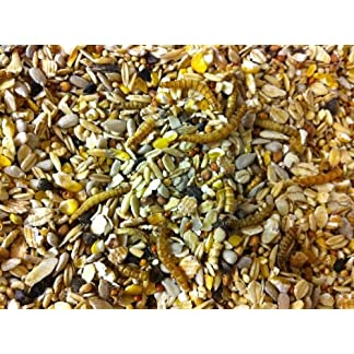 12.5 KG Superior Wild Bird Seed with Mealworms 12.5 KG Superior Wild Bird Seed with Mealworms 613CiRQ3vdL