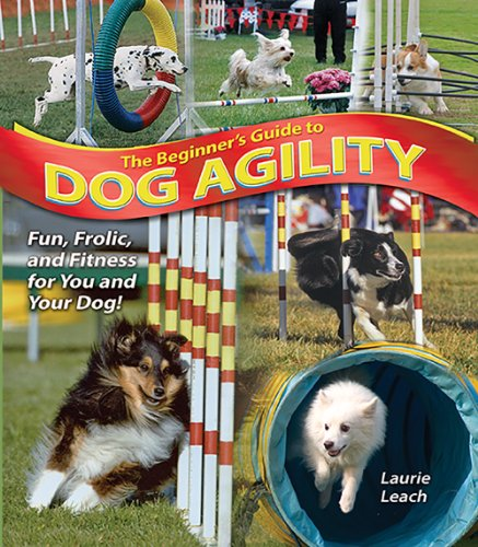 The Beginner's Guide to Dog Agility -