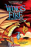 Wings of Fire: The Dragonet Prophecy (Wings of Fire Graphic Novel)