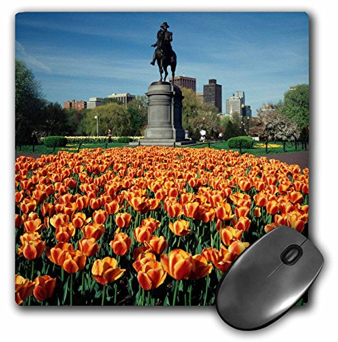 Danita Delimont - Walter Bibikow - Statues - USA, Massachusetts, Boston. Tulip patch with statue of Washington. - MousePad (mp_192272_1) (Boston-statue)