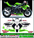 Kit adesivi decal stikers KAWASAKI ZX 10 R NINJA 2008 2010 REPLICA TOM SYKES WSBK (ability to customize the colors)
