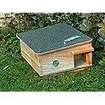 hedgehog feeder/house Hedgehog Feeder/House 613Fwl 2BhS5L