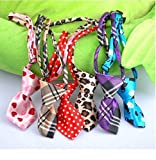 #9: Pets Empire Dog Collar Cat Teddy Pet Puppy Toy Grooming Bow Tie Necktie Clothes- 1 Piece Color May Vary