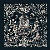 The Dusk Loom [Vinyl LP]