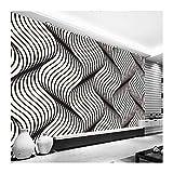 YUANLINGWEI Benutzerdefinierte Jede Größe 3D Wandbild Moderne Mode Geometrische Muster Schwarz Weiß Arc Tapeten,230cm (H) X 310cm (W)