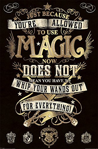 Poster Harry Potter Magia