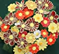 Blumenset 10 Keramikblumen Sommer von ROWE Deko - Du und dein Garten
