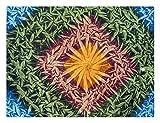 Bett & Sofaüberwurf Wandteppich 200 x 240 Tagesdecke Indisch optisches Muster