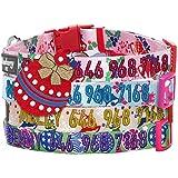Blueberry Pet Weihnachten Party Fair Isle Stil Urlaub Saison Hundehalsband mit abnehmbarer Fliege, verstellbare Pet Halsband Basic
