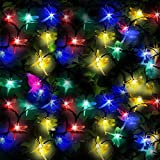 Picture Of 50 Multi-Colour LED Dragonfly Solar Fairy Lights / Solar String Lights by SPV Lights: The Solar Lights & Lighting Specialists (Free 2-year Warranty)