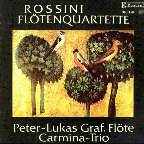 Sonata No. 1 in G Major: I. Moderato