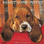 Just Basset Hound Puppies 2017 Calendar