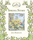 Cover of: Spring Story (Brambly Hedge) | Jill Barklem
