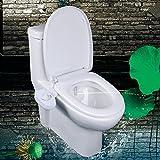 Decdeal WC Bidet Dusch-WC für Intimpflege mit Selbstreinigender Düse zur Kaltwasser