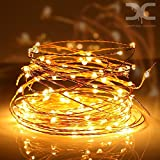 Best Outdoor String Lights - Dripping Colors Waterproof USB Copper 10M LED String Review