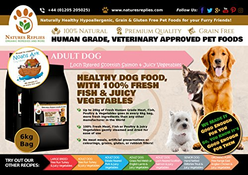 NATURES REPLIES: Natural Healthy Human Grade Veterinary Approved Grain Gluten Rice Free Best ADULT Dog Food Loch Reared Scottish SALMON in 6Kg Bags. Aids Joint Repair Mobility Cognitive Function Visual Development Reduce Inflammation Hypoallergenic Pet Foods Nutrition Clean Dog Food Mats & Bowls. Use as Kibble Edibles or Healthy Treats for ALL Breeds and Dog Training. ONLINE FREE FAST DELIVERY -