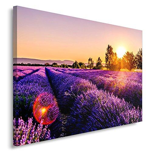 Feeby Tableau Déco - 1 Partie - 80x120 cm, Impression sur Toile Décoration Murale Image Imprimée, Prairie, Lavande, Nature, Violet