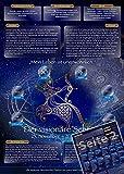 Sternzeichen Schütze - Die Horoskop- und Charakter-Karte für Liebe, Partnerschaft, Beruf, Finanzen und Gesundheit: Die psychologische Astrologie von ... und Sternen [DIN A4 - zweiseitig, laminiert]