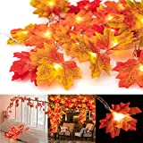 Ventvinal Ahornblätter Lichterketten,20 LED Herbst-Ahornblatt-Girlande Lichtern 3AA batteriebetrieben Herbst Blättergirlande Dekoration Lichter für...