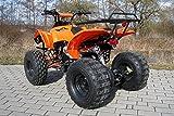 Kinder Quad S-10 125 cc Motor Miniquad 125 ccm orange Warriorer - 3
