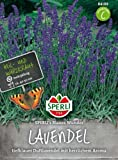 Sperli Lavendel SPERLI's Blaues Wunder