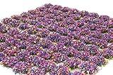 WWS 100 Mechones autoadhesivos de Hierba estática de 4mm Flores - Modelismo Ferroviario, Dioramas, Escenografías