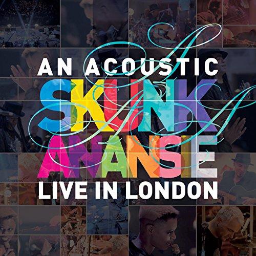 An Acoustic Skunk Anansie - Li...