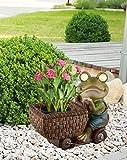 Frosch mit LED Solarleuchte Solarlampe Solar Solarlicht Gartenleuchte Deko Gartendekoration (Pflanzschale mit Beleuchtung, Blumentopf, Akku, Gartenlampe, Gartenlicht, Gartenbeleuchtung, Höhe 24 cm)