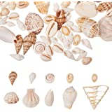 PandaHall 250g 10 Style Petits Coquillages Charmes Artisanaux de Coquillages en Spirale Ocean Beach pour la Fabrication de Bi