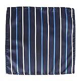 Little Sporter Einstecktuch Streifen Herren Pocket Squares Tasche Handtuch Herren Elegante Einstecktuch Halter Dunkelblau