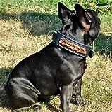 Tysons Breeches  Robin Hundehalsband Leder Halsband extra Breit Schwarz Braune Kordel weich unterlegt M L XL gr. + Mittel Hunde (M)