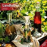 Landleben 2020, Wandkalender / Broschürenkalender im Hochformat (aufgeklappt 30x60 cm) - Geschenk-Kalender mit Monatskalendarium zum Eintragen