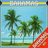 BTI Tauchreiseführer Bahamas, 1 CD-ROM Für Windows 3.1/95
