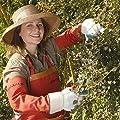 planto 90003 Canvas Armschützer Sicherer Schutz gegen Dornen beim Rosen schneiden! von planto GmbH bei Du und dein Garten