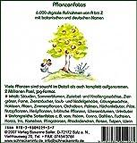 Pflanzenfotos. DVD-ROM: 6.000 digitale Aufnahmen von A bis Z mit botanischen und deutschen Namen