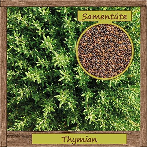 Samenliebe hochwertige Kräuter-Samen - Große Auswahl & viele Sorten - aus natürlichem Anbau - aus Deutschland Östereich Schweiz & Italien, Samensorte :Thymian -