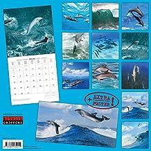 Delfine 2018: Kalender 2018 (Artwork Edition)